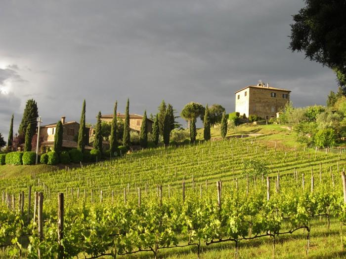 Il Palazzone, Montalcino