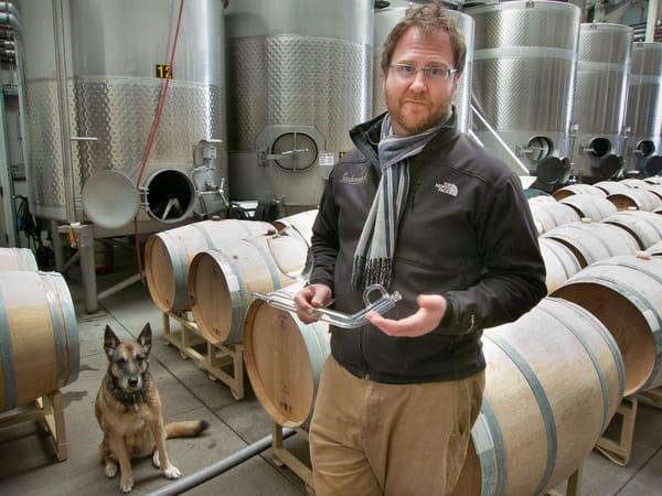 Massican Winery, Calistoga